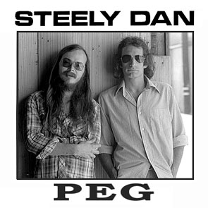steely dan instrument medical